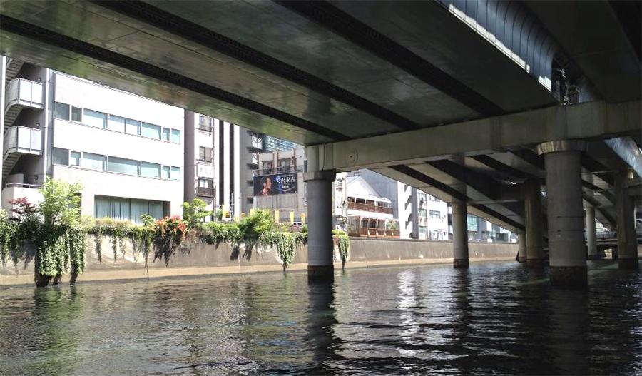 川を覆い隠す高速道路
